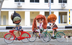 These bikes are too tall for us!!! Where are the training wheels??? (Kewty-pie) Tags: vintage gnome dolls helmet bicycles blythe custom evie dollskingdom littleditzies gingerweasley misscaterpillar