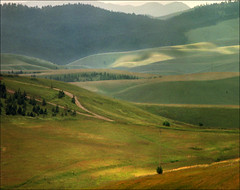 light and shadow (Katarina 2353) Tags: mountain film landscape nikon serbia valley srbija zlatibor katarinastefanovic katarina2353