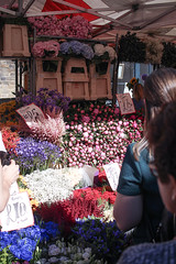Columbia Road Flower Market (The Art of Exploring) Tags: flowers england flower kingdom peony flowermarket flowerstall peonies eastlondon columbiaroad flowerseller columbiaroadflowermarket londonunited columbiardflowermarket columbiard londonmarket londonflowermarket