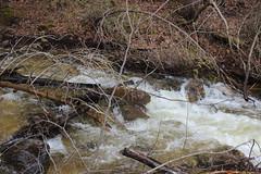IMG_0301 ( Szczep Wodny Batyk ) Tags: zima wiosna brucetrail snieg wedrowka szczepwodnybaltyk szczepbaltyk silvercreekconservationarea wedrownicy druzyna16ta starsiharcerze