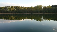 Lake reflection (modestmoze) Tags: blue trees summer sky brown white lake reflection green nature water yellow clouds forest outside outdoors warm day sunny line treeline