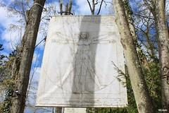 L'Homme de Vitruve (Linelo) Tags: davinci closlucé léonarddevinci vitruve