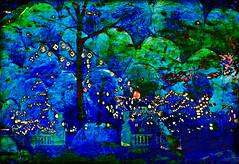 Garden of Lights (Terry Pellmar) Tags: winter texture philadelphia night garden lights