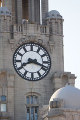 The Royal Liver Building and surrounding area (Chris Dimond) Tags: clock liverpool liverbirds liverbuilding royalliverbuilding 2015