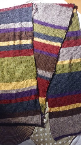 """Doctor Who Scarf • <a style=""""font-size:0.8em;"""" href=""""http://www.flickr.com/photos/92578240@N08/25988955933/"""" target=""""_blank"""">View on Flickr</a>"""