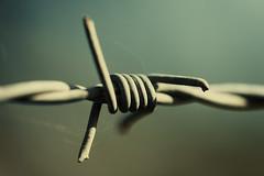 Theres Somethin Sinister In The Wind (Mathias Brea) Tags: detalle acero alambre alambrada