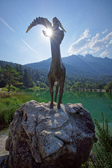 Capricorn (marko.erman) Tags: sculpture lake mountains alps reflection green nature montagne reflections plante de landscape scenery eau sony lac calm slovenia serenity serene slovenija charming paysage pure extrieur deau razor cours pelouse calme colline capricorn jasna pristine idilic ruisseau kranjskagora jezero flanc prisank