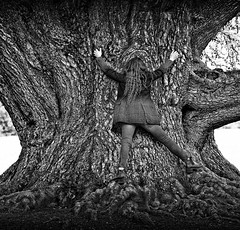 free hugs... (sermatimati) Tags: city trees light sunset shadow portrait bw white black como hot love nature make up contrast dark giant nude twilight nikon hug tramonto darkness dusk good bare magic grow evil charm squeeze sombre shade wife gloom witches fotografia grip embrace somber piping bianco lombardia nero amore dull hold pinch treehugging dingy boiling sera strega dimness gloaming selfie blackness grasp moglie emozioni tighten scaling fotografare clench villaolmo hugatree cedrodellibano monumentaltree murkiness abbracciare alberomonumentale sermatimati silvoterapia