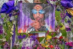 Paisley Park Tribute (Doug Wallick) Tags: park minnesota painting studio death memorial artist purple prince tribute paisley chanhassen