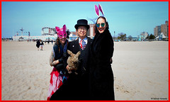 Dr. Takeshi Yamada and Seara (coney Island sea rabbit) visited Coney Island Polar Bear Club's weekly winter dipping at Coney Island Beach in Brooklyn, NY on March 27 (Sun), 2016. Easter Sunday. With Laura Simon and Mj Moscowitz.  20160327SUN D (searabbits23) Tags: wild ny newyork sexy celebrity rabbit art hat fashion animal brooklyn easter asian coneyisland japanese star tv google king artist dragon god manhattan famous gothic goth uma ufo pop taxidermy vogue cnn tuxedo bikini tophat unitednations playboy entertainer oddities genius mermaid amc mardigras salvadordali performer unicorn billclinton seamonster billgates aol vangogh curiosities sideshow jeffkoons globalwarming takashimurakami pablopicasso steampunk damienhirst cryptozoology freakshow polarbearclub leonardodavinci seara immortalized takeshiyamada museumofworldwonders roguetaxidermy searabbit barrackobama ladygaga climategate minnesotaassociationofroguetaxidermists  manwithrabbit