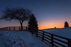 Winter Sunrise in Caledon (Explore - Best Position #8 -  April 8, 2016) (B.E.K.) Tags: longexposure snow tree sunrise fence explore caledon nikon247028 nikond800