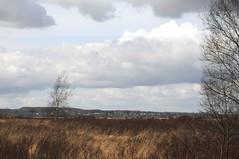 Spazierfahrt zum Sdermoor am letzten Tag im Mrz - im Hintergund erahnbar ist Bergenhusen auf seinem Holm; Stapelholm (31) (Chironius) Tags: sky clouds germany deutschland nuvole wolke wolken pantano peat swamp bottoms alemania marsh moor nuage bog marais allemagne nube germania schleswigholstein sump ogie sumpf pomie   niemcy tourbire bergenhusen   stapelholm turbera pomienie marcageuse szlezwigholsztyn