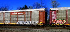 opt - adezr - why - naver - yovoy (timetomakethepasta) Tags: train shoe graffiti pacific southern sp why freight opt udm aos sts autorack naver yovoy adezr