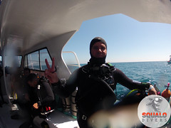Scuba Dive in Key Largo-April 2016-13 (Squalo Divers) Tags: usa divers key florida scuba diving padi ssi largo squalo