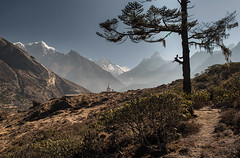 Himalaya (Andrei Doubrovski) Tags: ama himalaya bazar amadablam namche dablam