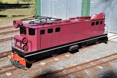 Mini_Ec_McLeansIsland_09April2016 (nzsteam) Tags: price train island traction engine railway scene steam engines locomotive boiler boilers mcleans sawmilling