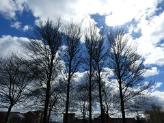 Hulme Park (stillunusual) Tags: street city uk england sky urban cloud tree landscape manchester cityscape streetphotography hulme urbanlandscape mcr urbanscenery 2016 hulmepark manchesterstreetphotography