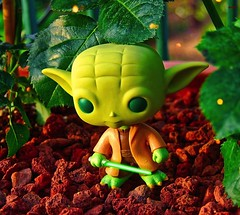 """""""For my ally is the Force"""" (Story in description) (BrickSev) Tags: original fiction sunset toy toys photography star starwars force yoda outdoor head space science pop master figure jedi scifi knight sciencefiction bobblehead wars collectible collectibles bobble trilogy funko prequel toyphotography"""