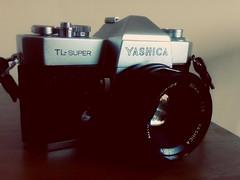Yashica TL Super (jcbkk1956) Tags: slr film analog 35mm manual yashica yashinon tlsuperelectro