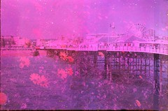 Brighton Pier Vs Meadow Flowers (4foot2) Tags: flowers sea abstract film 35mm soup pier weird seaside brighton experimental colours doubleexposure destruction vivid soak 35mmfilm ethereal wildflowers analogue unreal seafront beetroot destroyed soaked brightonpier expiredfilm palacepier 2016 weirdcolours filmphotography oldfilm vividcolours colourshift outofdatefilm colourfilm beetrootjuice orwocolor c41film filmsoup c5168 4foot2 orwocolorc5168 wrongchemistry 4foot2flickr 4foot2photostream fourfoottwo