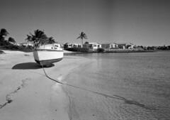 Derelict & Anchor (Kiev 2A, Jupiter 12) (PositiveAboutNegatives) Tags: film analog zeiss 35mm boat ship florida wideangle beached jupiter12 wreck derelict coolscan foma aristaedu biogon fomapan nikon9000 contaxii kiev2a