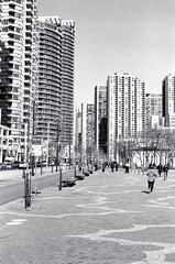 Along Queen's Quay (Bill Smith1) Tags: toronto nikonf3hp hc110b berggerbrf400 nikkorai50f14lens filmshooterscollective spring2016 heyfsc billsmithsphotography