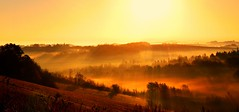 Golden winter (VB31Photo) Tags: trees winter light sunset sky orange sun mist france cold tree nature yellow misty fog skyline sunrise landscape gold dawn golden soft country hill foggy hills beam zen fields midi garonne haute pyrnes midipyrnes lauragais supervincent31 vb31photo