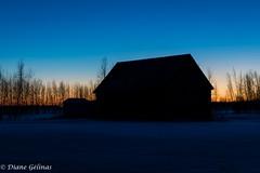 Very early (gelinas_diane) Tags: blue trees sky orange field sunrise bleu ciel arbres champ leversoleil