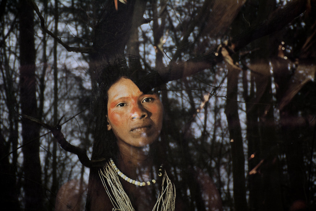the huaorani society of ecuador By managing their land collectively, the waorani women's association of ecuador  is working toward zero deforestation, the protection of.