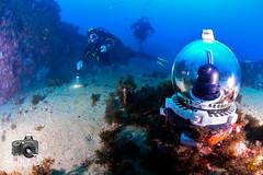 Seven Sisters (ShaunMYeo) Tags: scubadiving reef gibraltar sevensisters underwatercamera calpe underwaterphotography  gibilterra ikelite      gibraltr  cebelitark gjibraltar ibraltaro hibraltar xibraltar giobrltar gibraltrs gibraltaras ibilt