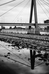 Colonia - imaging.. ( Peppedam -www.glam.vision) Tags: street travel bridge bw water reflections germany europe colonia koln giuseppedamico nikond3 nikkor2470