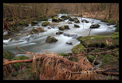 Rockwater - Umsplter Stein (hubert.sigl1) Tags: water creek landscape moss rocks wasser au pflanzen steine bach landschaft moos flowingwater landschaftsfotografie canoneos700d fliesgewsser hubertsigl landscapefotographie