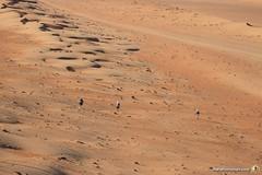 3-Oman-Desert-Marathon-day-2_1657