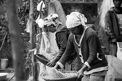 India_North_East_111 (Georg Dombrowski) Tags: life blackandwhite bw india schwarzweiss northeast indien swsw streetphotograhy arunachalpradesh northeastindia sangtivalley