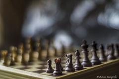 Chess focus (Antonio Ciampriello) Tags: vintage bokeh chess mc m42 mf 12 55 manualfocus revue chinon scacchi porst yashinon vintagelens tomioka revuenon 55mm12 bokehmonster revuenonmc55mm12 revuenonmc5512