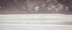 Salar de Las Parinas | Atacama (Jos L.Gutirrez) Tags: chile flowers sea cactus panorama naturaleza sun flores tourism sol beach nature birds fauna rural trekking canon relax landscape island penguins boat mar photo nationalpark fisherman sand flora nikon waves foto photographer desert playa paisaje aves tourist arena photograph silence fox atacama rest desierto fotografia turismo caminata olas isla vacaciones zorro silencio pinguino descanso norte migrations oceano fotografo bote proteccion pescadores turista caleta pandeazucar parquenacional guanaco chaaral migraciones conservacion aislado d7100 t1i canont1i viewponit aislated
