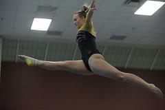 4A4A6272 (Gustavus Athletics) Tags: gymnastics