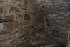 DSC_7675 (seustace2003) Tags: uk castle scotland edinburgh alba united kingdom edimburgo edinburgo schotland scozia cosse craigmillar koninkrijk verenigd grootbrittanni