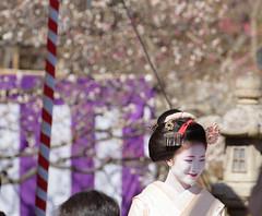 北野天満宮・梅花祭11・Kitano Shrine (anglo10) Tags: festival japan kyoto shrine 神社 北野天満宮 京都市 京都府 梅花祭
