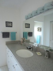 2016 Hall Bath (Abby flat-coat) Tags: bathroom inventory 2016 contento hallbath18617brt