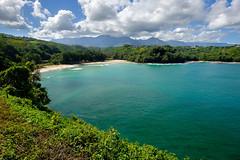 FUJI4139-2 (capturedbyflo) Tags: seascape beach water landscape hawaii fuji kauai fujifilm xt1