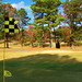 "GUntersville Golf Course 3 by BLMH (2)edited • <a style=""font-size:0.8em;"" href=""http://www.flickr.com/photos/91322999@N07/25382509885/"" target=""_blank"">View on Flickr</a>"
