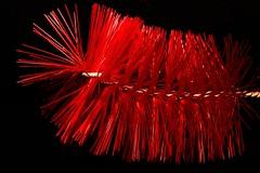 Red brush. (Les Fisher) Tags: macromondays theme red bristles brush onblack smileonsaturday redrules