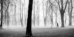 Re-Discovered: Looking back at Day 163 / 365 (marcin baran) Tags: park street city trees urban bw white mist man black tree misty fog mystery composition forest walking person town solitude mood alone moody fuji pov path walk empty foggy streetphotography atmosphere poland polska run mysterious fujifilm mon 365 sole gliwice x100 365project marcinbaran x100t