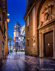 Catedral de Cadiz, Andalucía, España (dleiva) Tags: door plaza city blue our sunset people color tree tower vertical architecture night square outdoors calle puerta gate torre view angle cathedral image low catedral ciudad structure palm illuminated cadiz christianity cádiz domingo province built incidental leiva dleiva