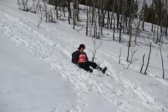 Jessie sledding (Aggiewelshes) Tags: travel winter snow jessie april snowshoeing wyoming jacksonhole grandtetonnationalpark 2016 gtnp taggartlaketrail