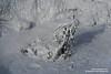 shs_n8_043977 (Stefnisson) Tags: iceland mud pot geothermal myvatn ísland hver solfatara námaskarð mývatn fumaroles hverir leirhver hverasvæði jarðhiti stefnisson