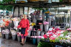 Flower seller (James- Burke) Tags: street flowers red england woman colorful fuji candid markets shops salisbury selling marketstall flowerseller flowersales womansellingflowers