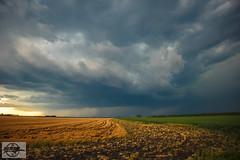 Kansas Storm Chasing at New Cambria, KS (Nanner Hogger) Tags: cloud storm rain weather tornado meteorology stormchasing tornadic tornadowarning stormchaser severethunderstorm tornadoalley severethunderstormwarning tornadochasing stormspotter stormspotting