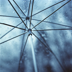 When the soft rain bewitches us (Alexis Szyd.) Tags: 6x6 film rain analog umbrella mediumformat ishootfilm 120film squareformat analogue argentique mittelformat moyenformat s2a filmisnotdead zenzabronica kodakportra160 believeinfilm alexisszyd